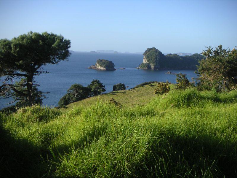 La penisola di Coromandel